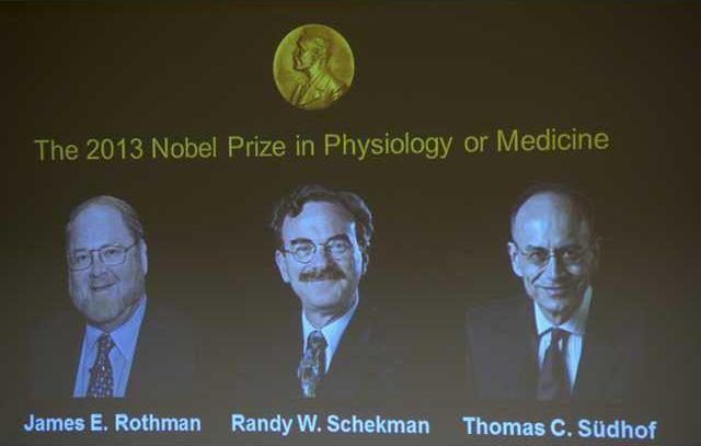 Nobel Medicine   Werm